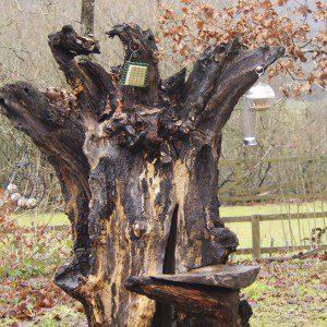Feeder Tree