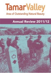 annual review cover website