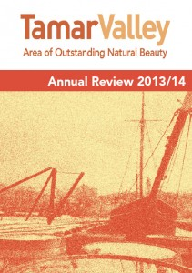 Annual Review_cover