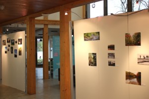 exhibition4