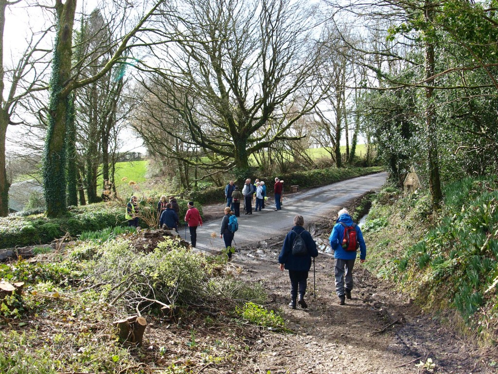 Circular walk around St Dominick, Tamar Valley Walk & Talk (c) J. Croft
