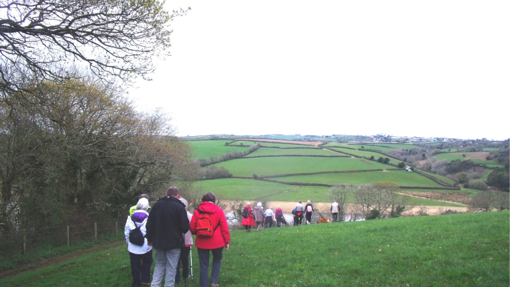 Group of walkers walking from Bere Alston to Bere Ferrers