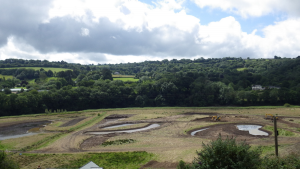 View from Eric Road, Calstock