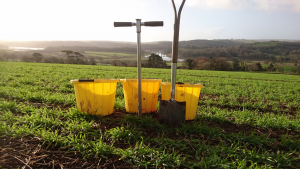 Soil sampling above St Germans
